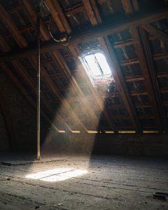 snake in the attic